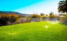 фото автоматического полива газона