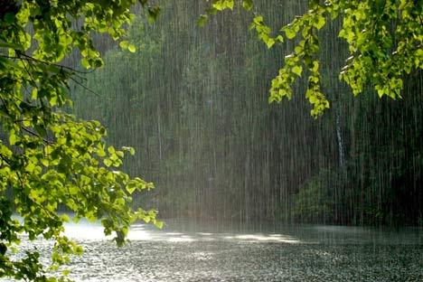Альтернативный источник пресной воды для коттеджа